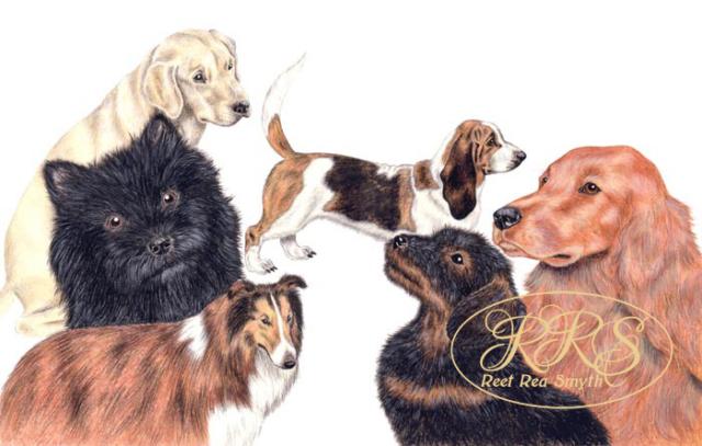 J. Herriot 'James Herriot's Dog Stories' cover image