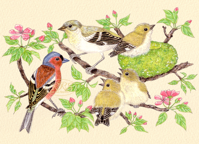 Card with chaffinches