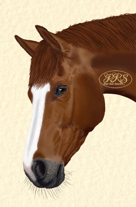 Horse Aroonia