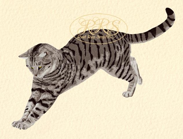 Stripy cat jumping