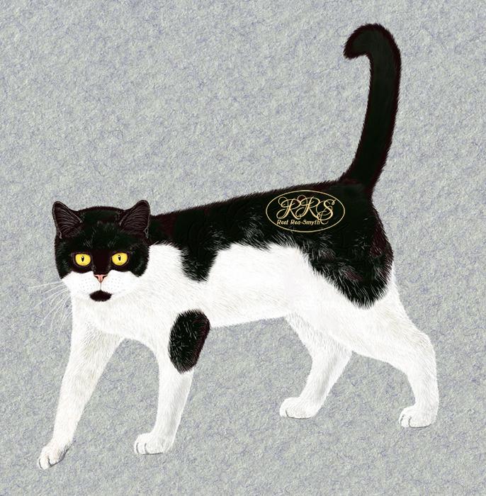 Cat Sooru