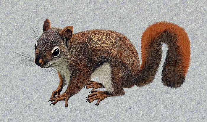 Oravapoeg